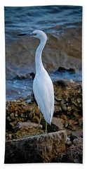 Eager Egret Beach Sheet by DigiArt Diaries by Vicky B Fuller