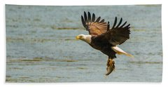 Eagle Departing With Prize Close-up Beach Sheet by Jeff at JSJ Photography