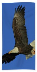 Beach Towel featuring the photograph Eagle Diving by Coby Cooper