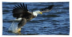Beach Towel featuring the photograph Eagle Fish Grab by Coby Cooper