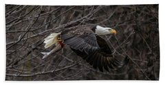 Eagle Fisher Beach Towel by Ray Congrove