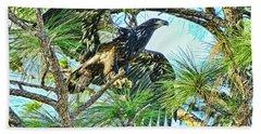 Beach Towel featuring the photograph Eagle Fledgling 2017 by Deborah Benoit