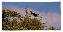 Eagle Fly Beach Sheet