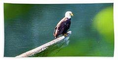 Eagle In Lake Beach Towel