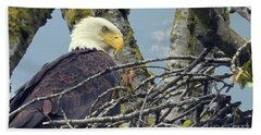 Beach Towel featuring the photograph Eagle In Nest by Rod Wiens