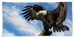 Eagle Landing On A Branch Beach Towel