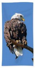 Eagle Lookout Beach Sheet