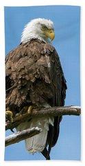 Eagle On Perch Beach Sheet