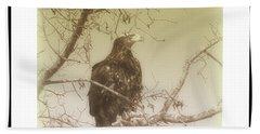 Eagle Perch Beach Sheet