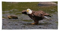 Beach Towel featuring the photograph Eagle Prepares For Take-off by Debbie Stahre
