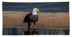 Eagle Reflection  Beach Towel by Mitch Shindelbower