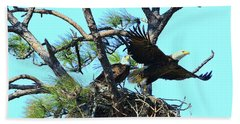 Beach Towel featuring the photograph Eagle Series The Nest by Deborah Benoit