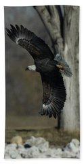 Eagle Soaring By Tree Beach Towel