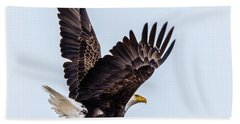 Eagle Taking Flight Beach Towel
