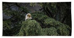 Eagle Tree Beach Towel by Timothy Latta