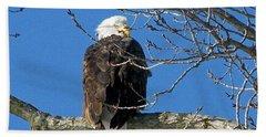 Eagle Watch Beach Towel by Sue Stefanowicz