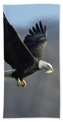 Beach Towel featuring the photograph Eagle With Small Fish by Coby Cooper