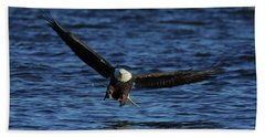 Beach Sheet featuring the photograph Eagle With Talons Up by Coby Cooper