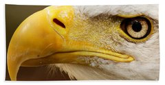 Beach Towel featuring the photograph Eagles Eyes by Sue Harper