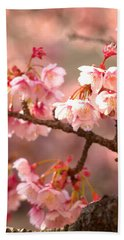 Early Cherry Blossoms Beach Towel by Rachel Mirror