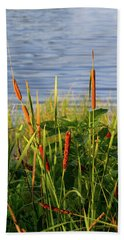 Early Morning Cattails Beach Towel