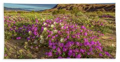 Early Morning Light Super Bloom Beach Sheet by Peter Tellone