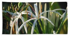 Early Morning Lily Beach Towel by LeeAnn Kendall