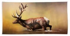 Bull Elk Beach Towels