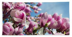 Early Spring Magnolia Beach Towel