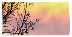 Beach Towel featuring the photograph Early Spring Sunset by Will Borden