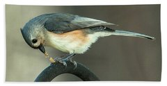 Early Titmouse Gets The Worm Beach Towel by Jim Moore