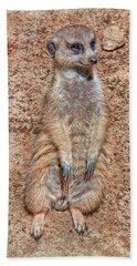 Beach Towel featuring the photograph Earth Manikin by Hanny Heim