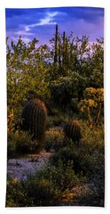 Beach Towel featuring the photograph East Of Sunset V40 by Mark Myhaver