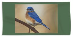 Beach Towel featuring the photograph Eastern Blue Bird Male by David Waldrop