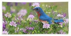 Eastern Bluebird - D010120 Beach Towel by Daniel Dempster