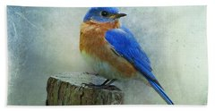 Eastern Bluebird II Beach Sheet