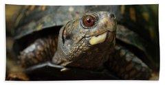 Eastern Box Turtle 4 Beach Sheet by Mike Eingle