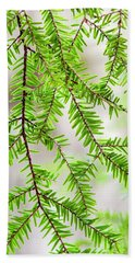 Beach Towel featuring the photograph Eastern Hemlock Tree Abstract by Christina Rollo