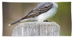 Beach Towel featuring the photograph Eastern Kingbird 2018 by Ricky L Jones