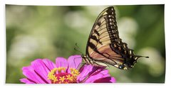 Eastern Tiger Swallowtail 2016-1 Beach Towel