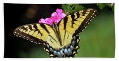 Eastern Tiger Swallowtail Beach Towel by Amy Porter