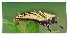 Eastern Tiger Swallowtail Beach Sheet