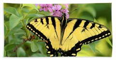 Eastern Tiger Swallowtail Butterfly Beach Sheet by Sheila Brown