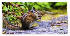 Beach Towel featuring the photograph Eating Chipmunk by Jonny D