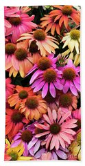 Echinacea Colour Beach Towel