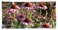 Beach Towel featuring the photograph Echinacea by Cynthia Powell