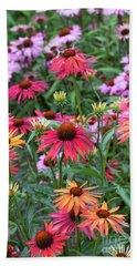 Echinacea Hot Summer Flowers Beach Towel