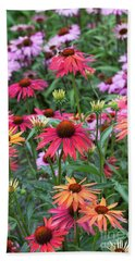 Echinacea Hot Summer Flowers Beach Sheet