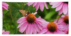Echinacea In Bloom Beach Towel