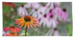 Echinacea Purpurea Orange Passion Flower Beach Towel
